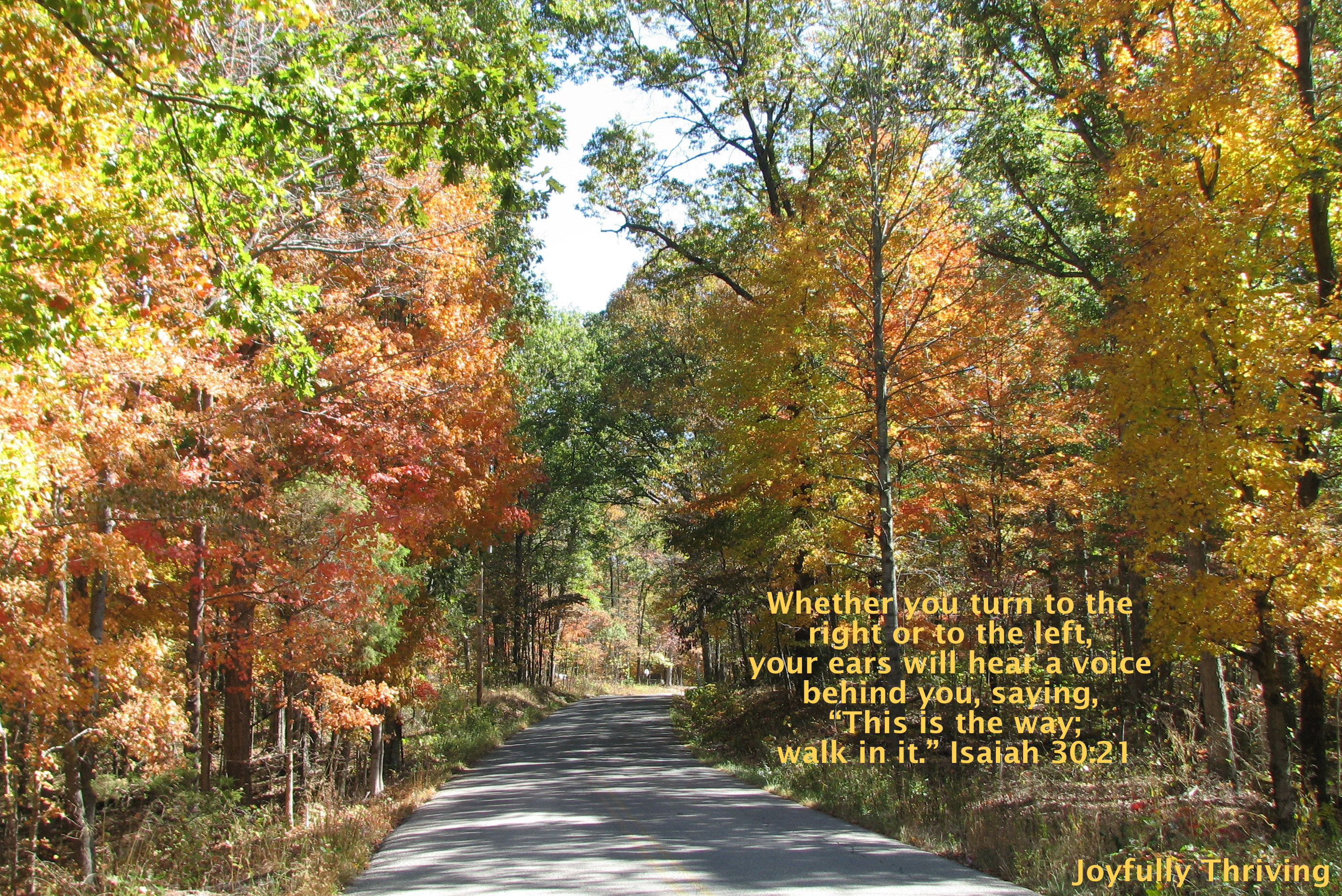 Fall-Scripture-Fall-Hawaii-Free-Download-Autumn-Photo-With-Scripture-Photos-Fall-wallpaper-wp4605808