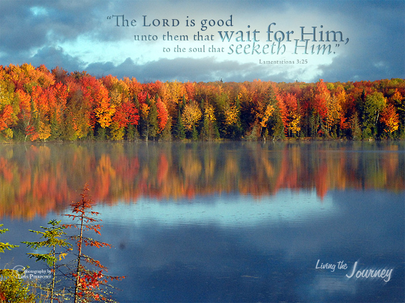 Fall-Scripture-Living-the-Journey-»-Inspiration-for-the-Journey-wallpaper-wp4605809