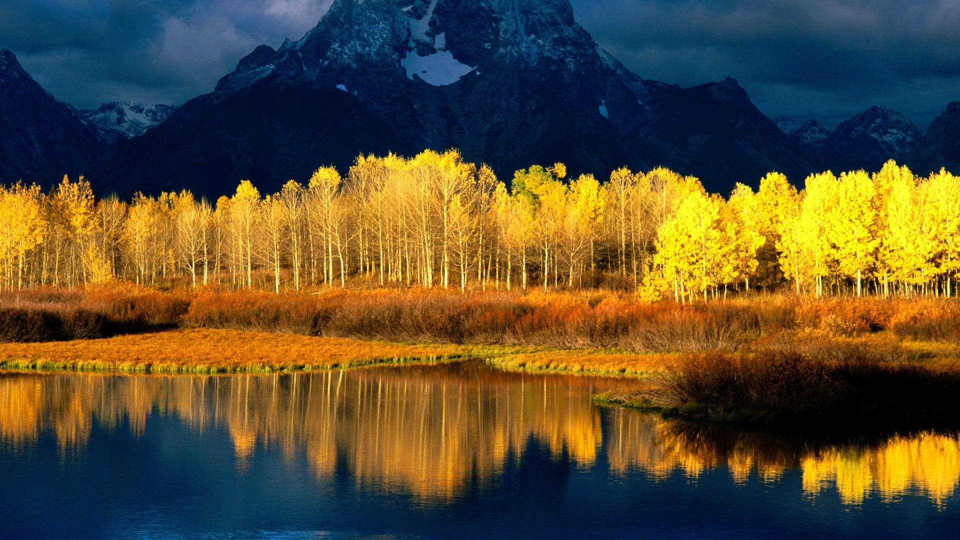 Fall-Trees-wallpaper-wp3405387