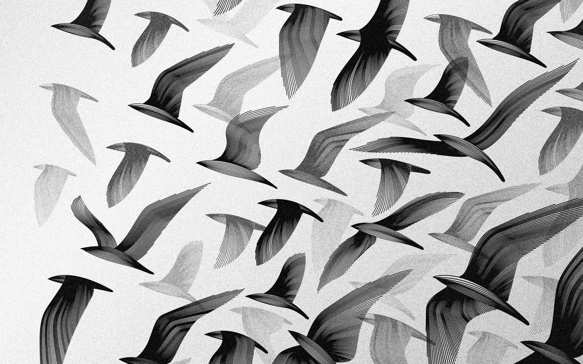 Flock-of-birds-over-the-trees-Wide-Collections-wallpaper-wp3405614