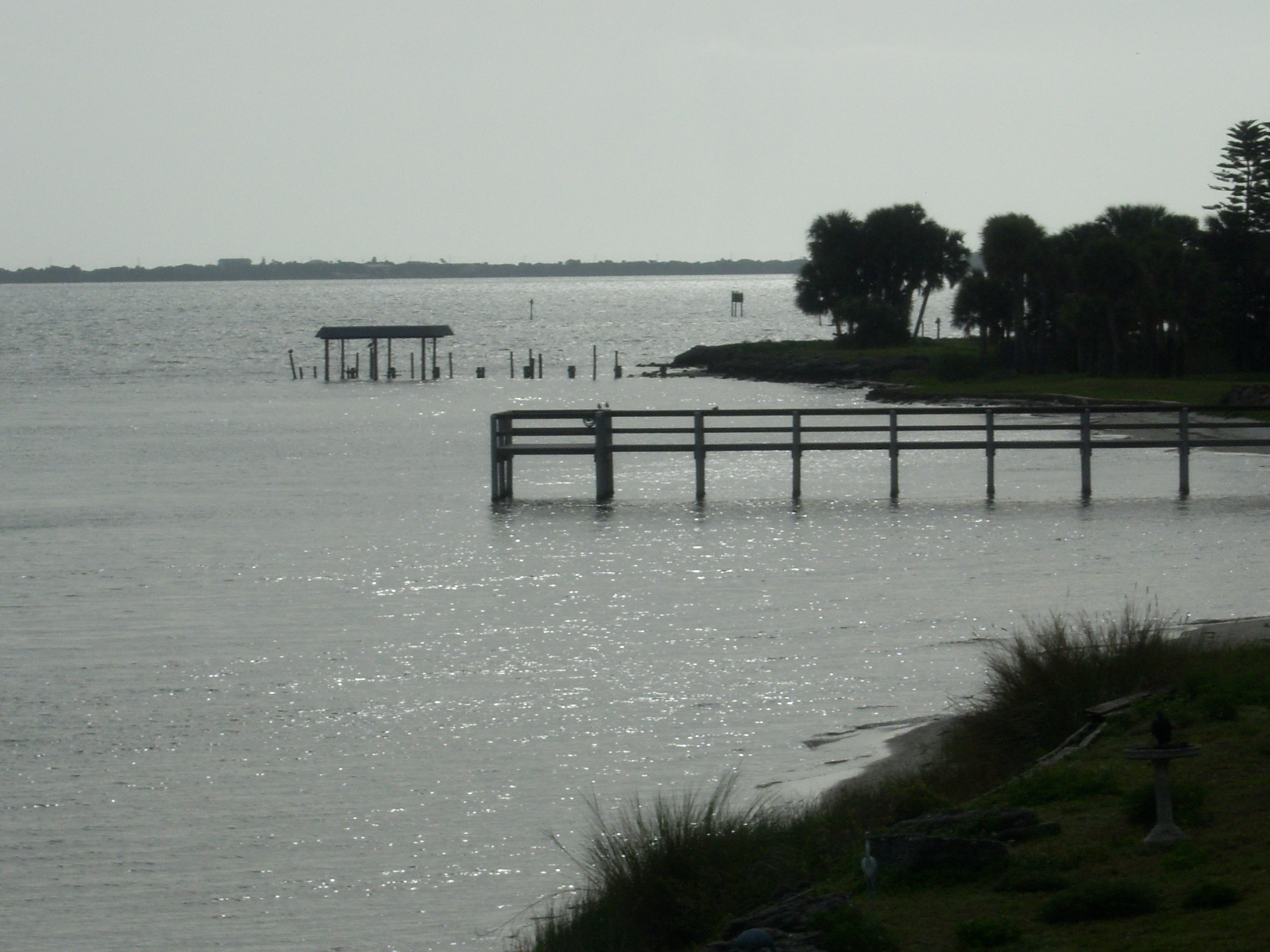Florida-Salt-Water-Fishing-Index-Experienced-Tips-and-Rules-For-Salt-Water-Fishing-Success-wallpaper-wp4407074