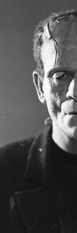 Frankenstein's-monster-as-portrayed-by-Boris-Karloff-in-Bride-Of-Frankenstein-wallpaper-wp4605993
