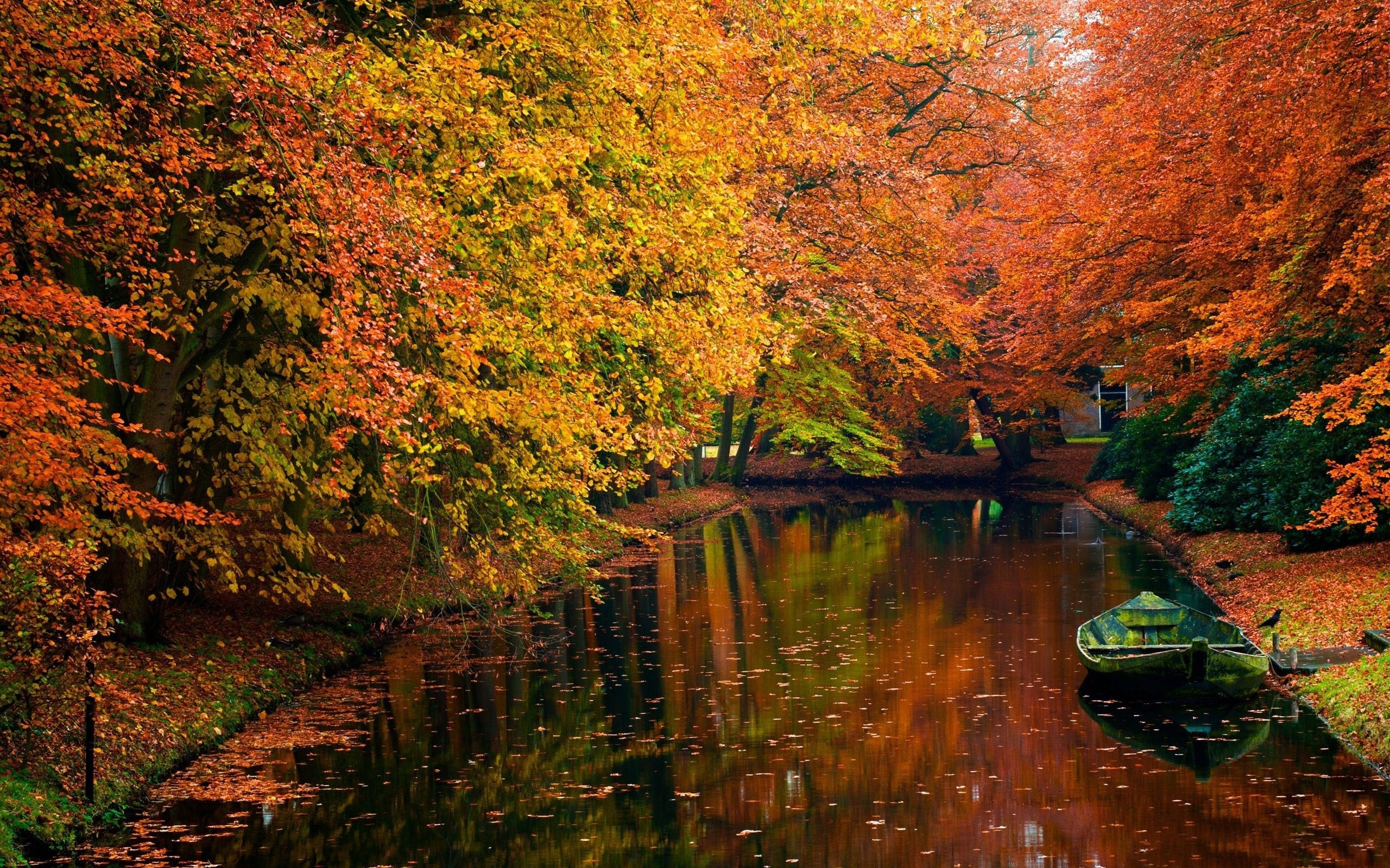 Free-Autumn-Mac-iMac-Retina-MacBook-Pro-wallpaper-wp3405778