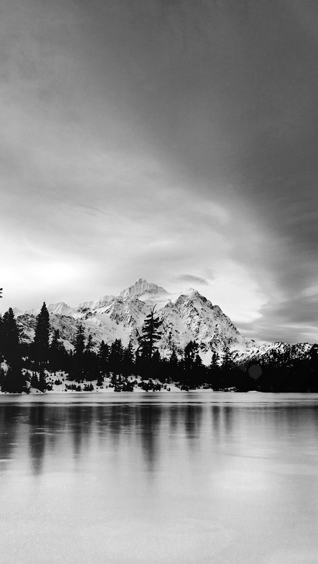 Frozen-Lake-Winter-Snow-Wood-Forest-Cold-Bw-Dark-iPhone-s-wallpaper-wp425636