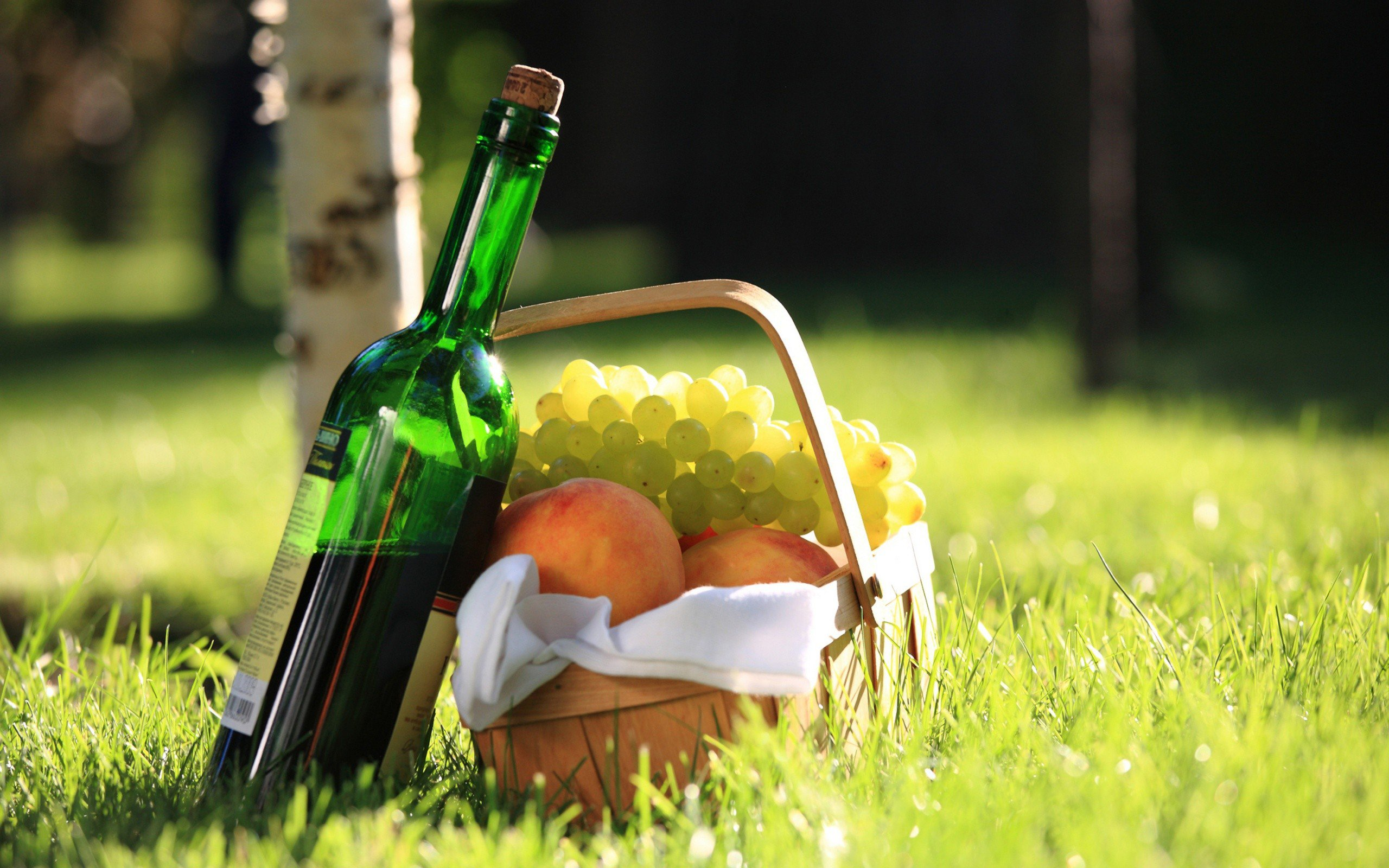 Fruit-Apples-Baskets-Bottles-Food-Fruits-Grass-Nature-Picnic-Wine-nature-photography-wallpaper-wp5405132