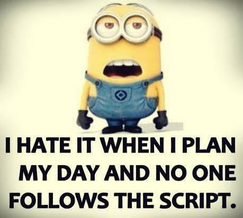 Funny-Minion-Pictures-Of-The-Week-wallpaper-wp4606109-2