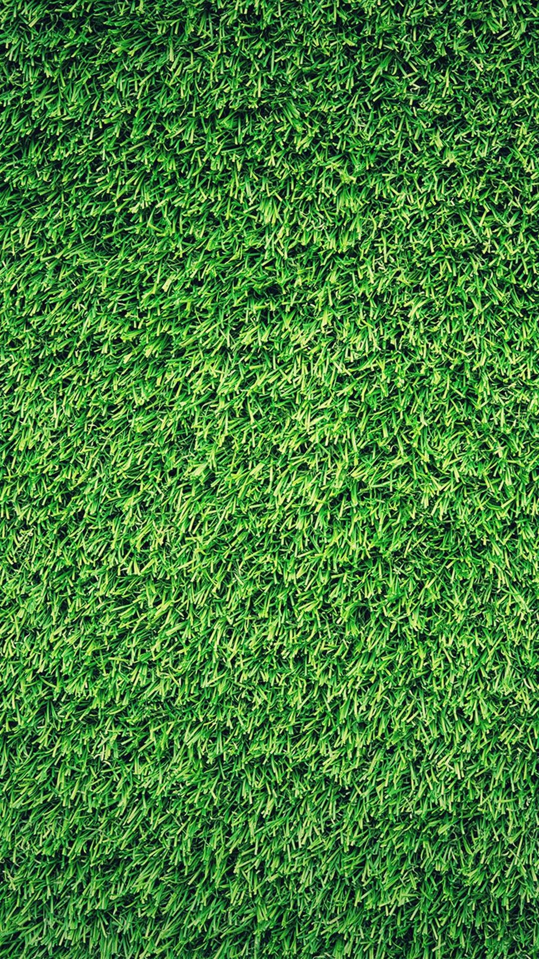 Grass-Green-Pattern-Nature-iPhone-plus-wallpaper-wallpaper-wp4806944