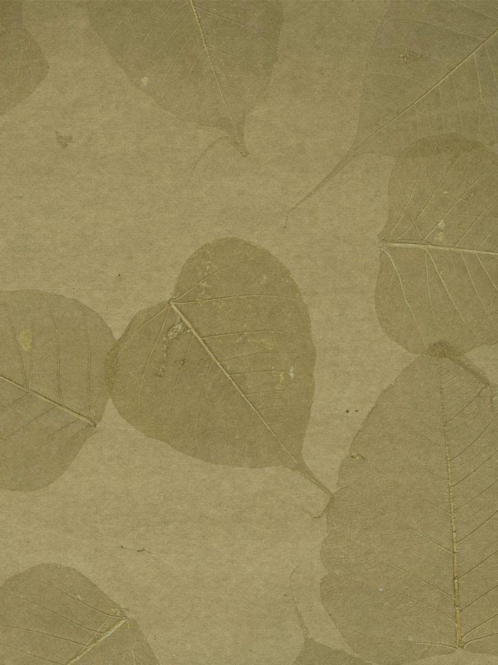 Grasscloth-From-Nature-With-Love-by-Julian-Scott-Astek-Pattern-NG-wallpaper-wp5806153