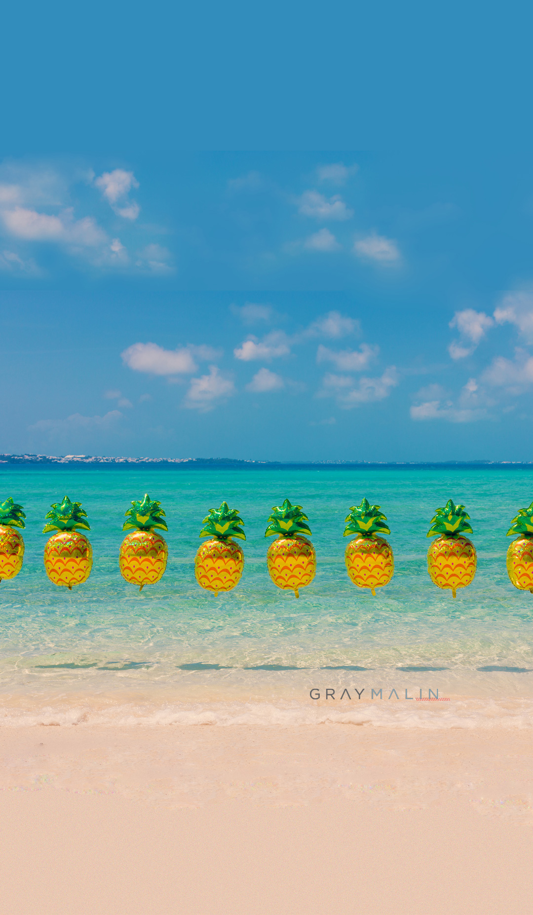 Gray-Malin-pineapples-wallpaper-wp3606343