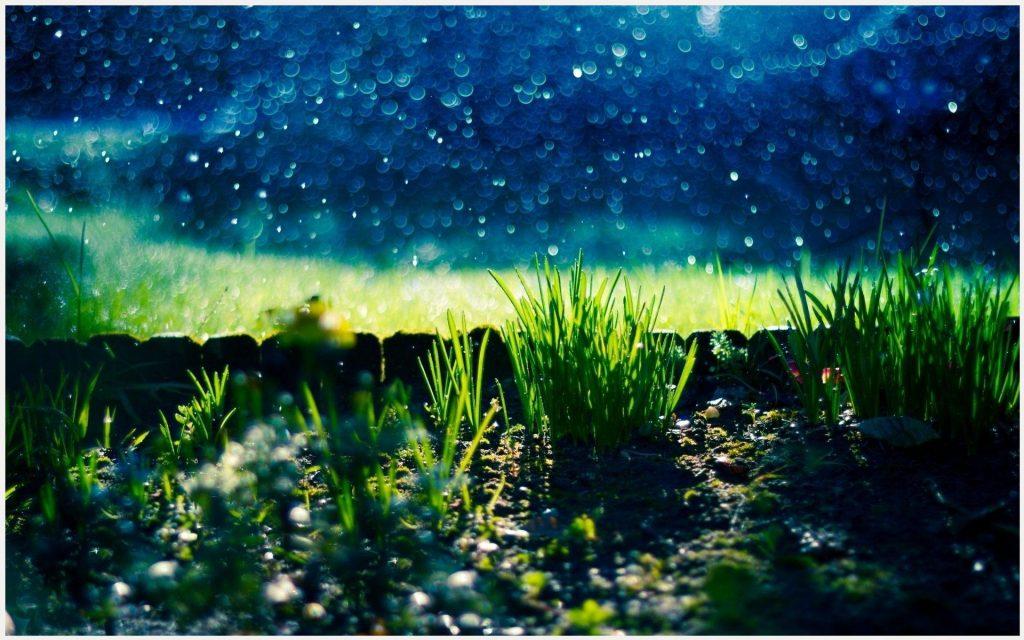 Green-Field-Natural-green-field-natural-1080p-green-field-natural-d-wallpaper-wp3606380