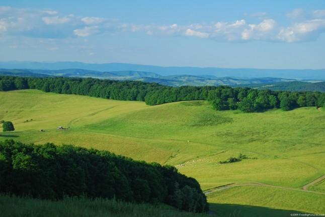 Green-Hill-in-the-summer-sunlight-wallpaper-wp5605298