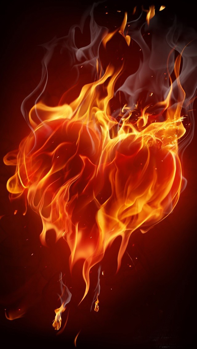 Heart-on-Fire-Would-make-an-awesome-tattoo-wallpaper-wp5806356