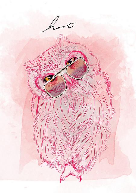 Hoot-owl-iphone-http-htctokok-infinity-hu-http-galaxytokok-infinity-hu-http-ip-wallpaper-wp422823