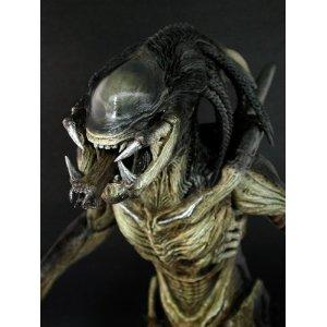 I-found-Sideshow-Collectibles-Hot-Toys-Movie-Masterpiece-Alien-Vs-Predator-Requiem-Inch-Model-wallpaper-wp5008876