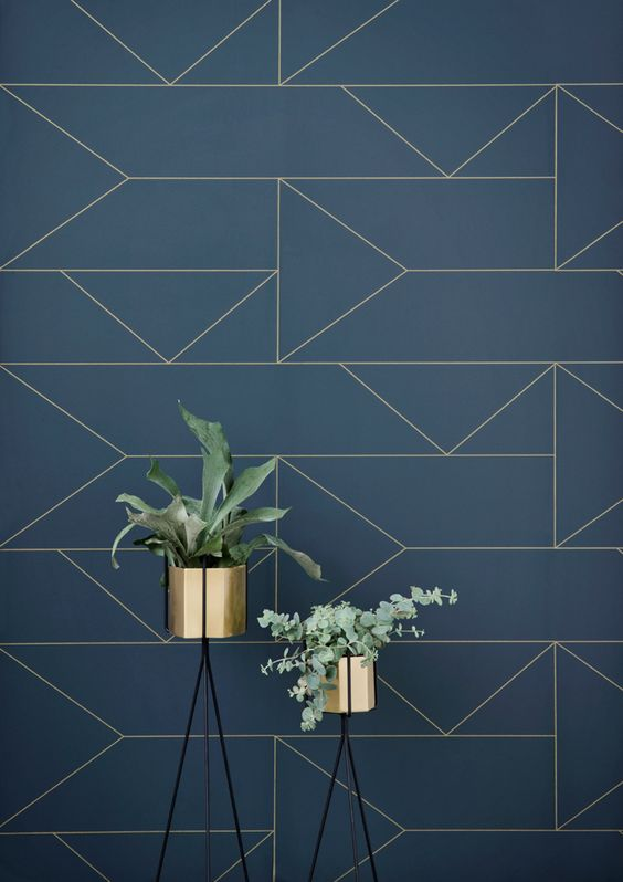I-have-these-brass-hexagonal-planters-now-to-buy-the-perfect-house-plant-to-go-in-it-spider-plan-wallpaper-wp3006907