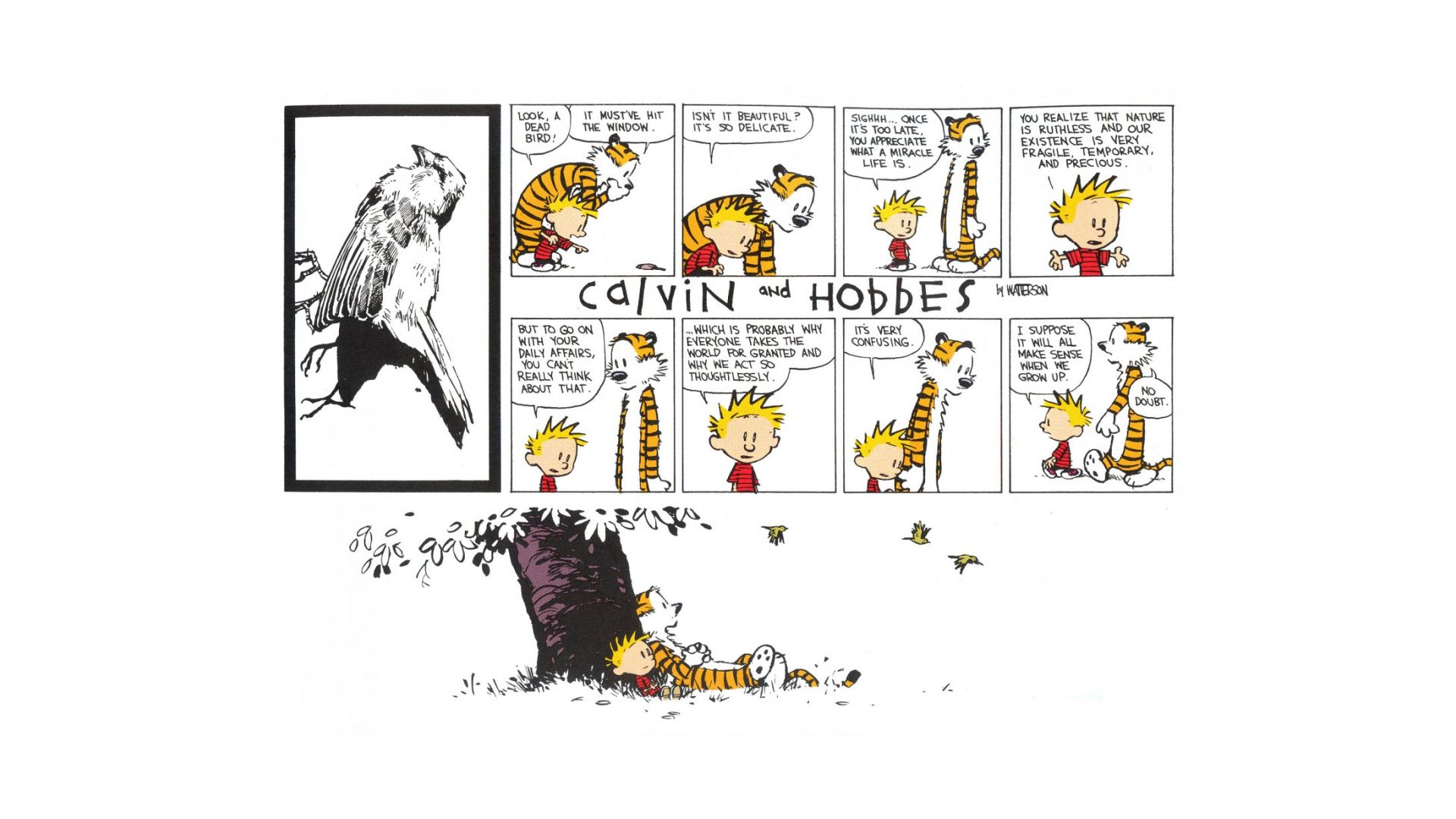 Image-result-for-calvin-and-hobbes-sad-wallpaper-wp3407307