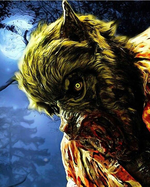 It-s-the-night-of-the-wolf-Wolfman-Werewolf-Wolf-Monster-Horror-wallpaper-wp5406275