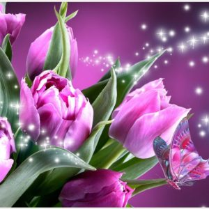 Pink-Butterfly-And-Tulip-Flowers-pink-butterfly-and-tulip-flowers-1080p-pink-wallpaper-wp3409787