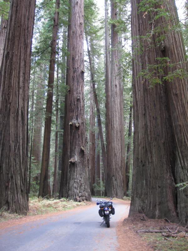 Redwood-Highway-Movie-top-images-wallpaper-wp300436