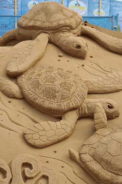 Sand-sculpture-turtles-Flickr-Photo-Sharing-wallpaper-wp30010270