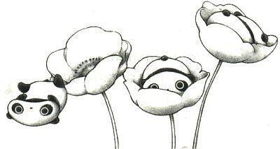 Tare-panda-betekent-luie-panda-wallpaper-wp44011853