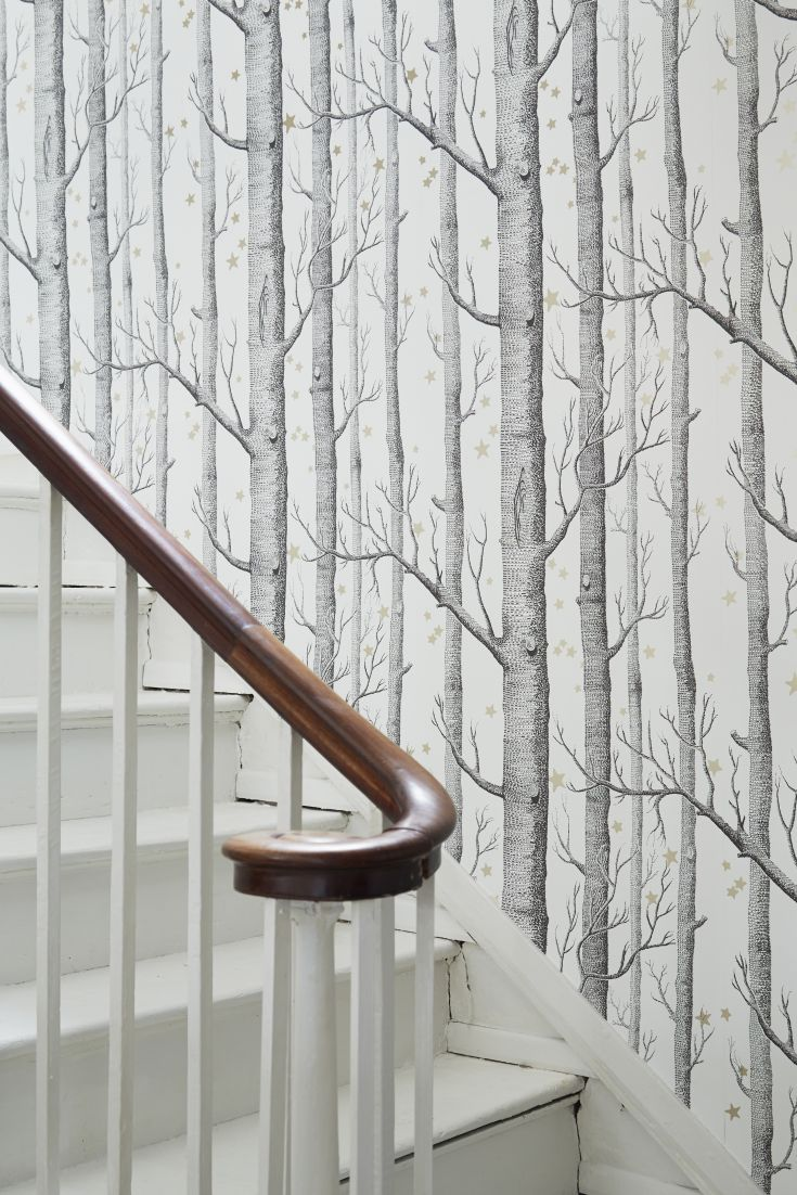 The-iconic-Woods-design-by-Cole-and-Sons-now-comes-with-stars-wallpaper-wp30011197
