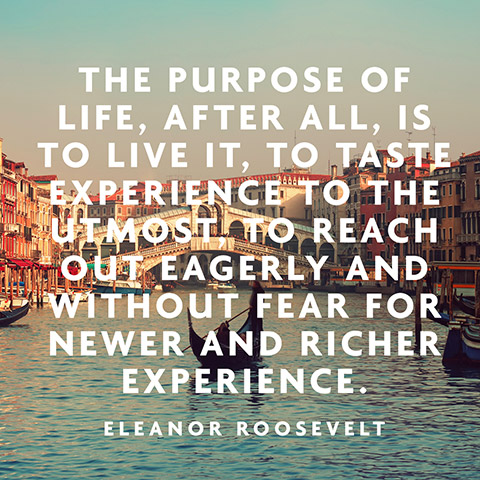 The-purpose-of-life-after-all-is-to-live-it-to-taste-experience-to-the-utmost-to-reach-out-eager-wallpaper-wp44012087