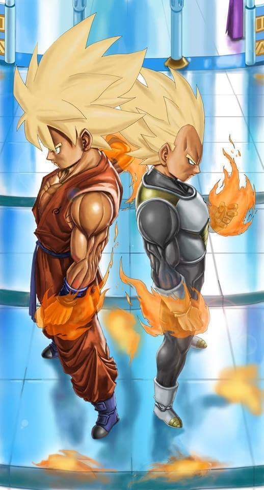Vegeta-and-Goku-wallpaper-wp58010441