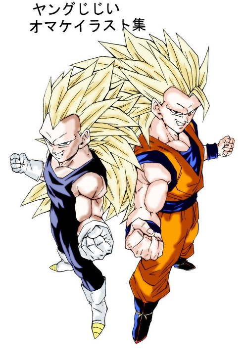 Vegeta-and-Goku-wallpaper-wp580526