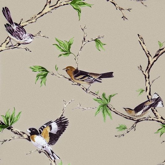 Villa-Fioro-A-showing-golden-birds-perched-on-branches-on-a-light-taupe-backgrou-wallpaper-wp4210354