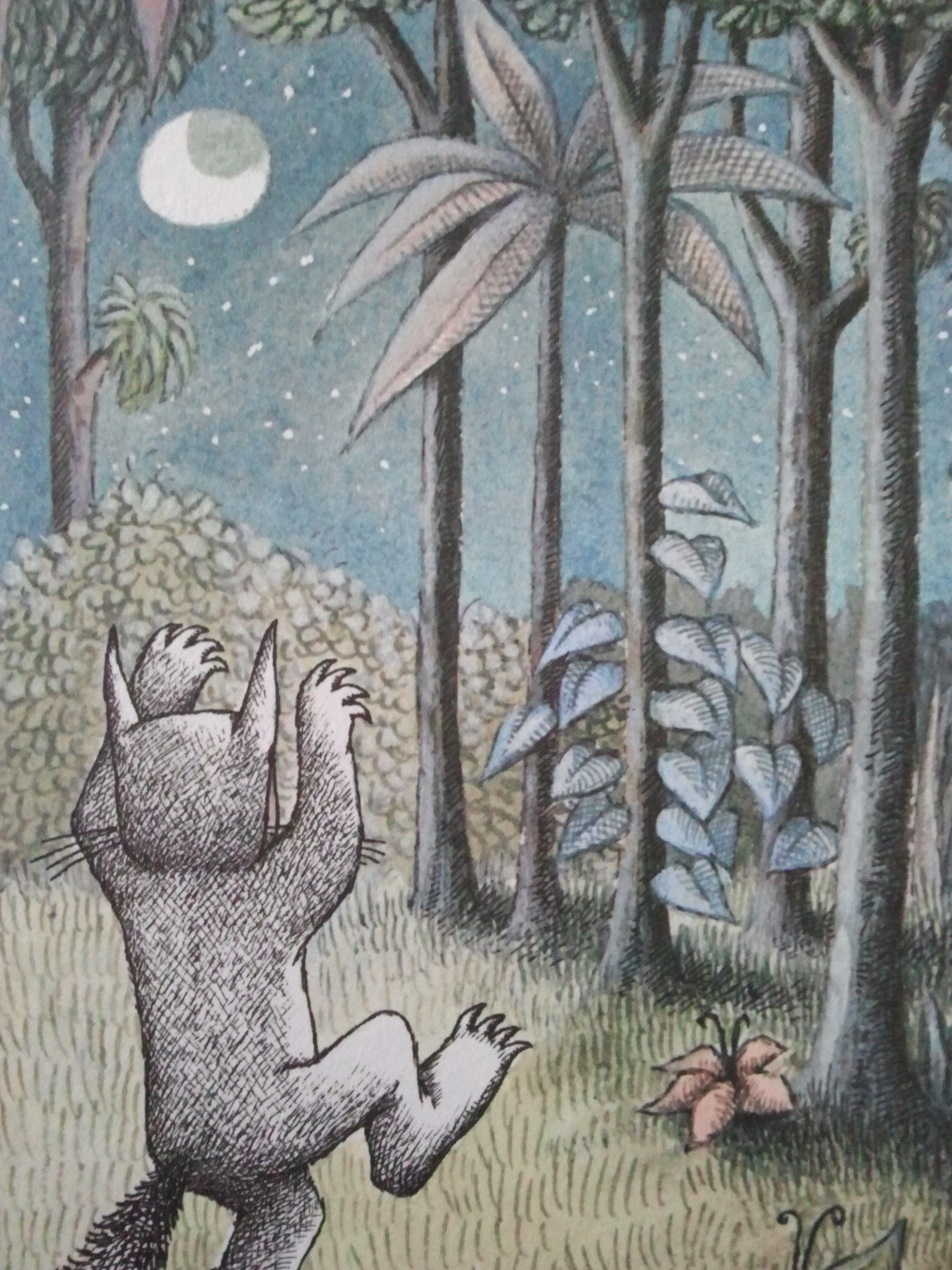 Where-The-Wild-Things-Are-by-Maurice-Sendak-wallpaper-wp540781