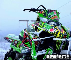 Arctic cat wallpaper