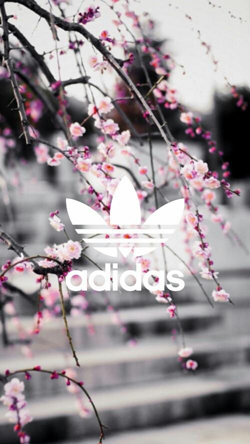 adidas-and-pink-image-wallpaper-wp4404217