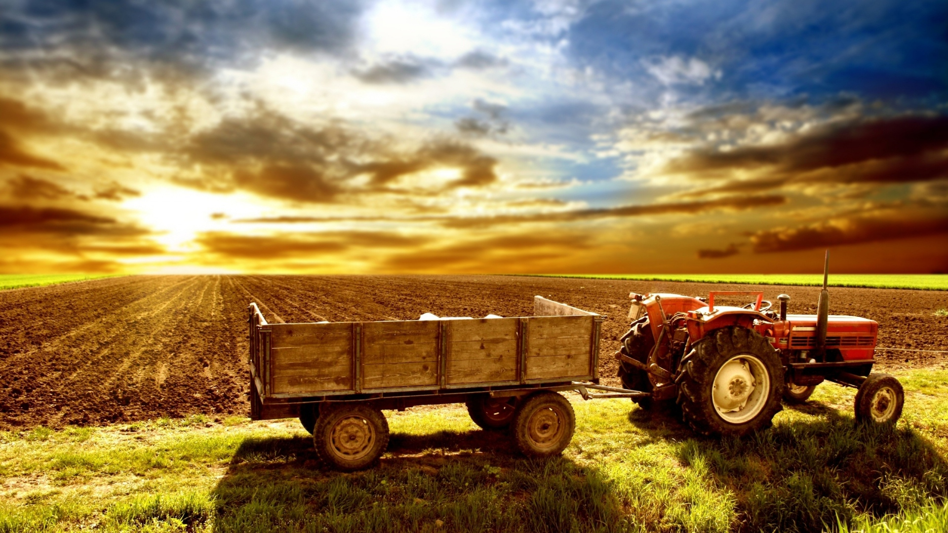 agriculture-hd-wallpaper-wp3401174