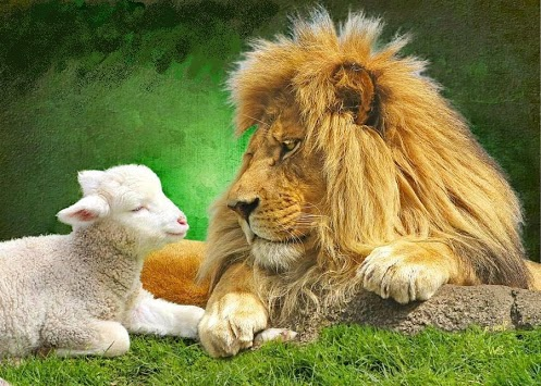 and-the-lion-will-lay-down-with-the-lamb-wallpaper-wp5204040