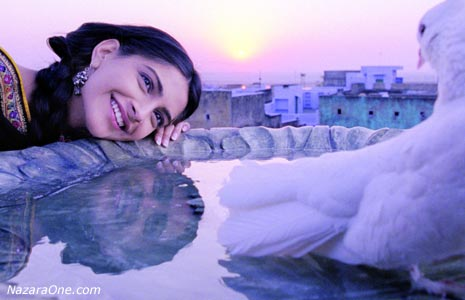 bcffffdfeadbbb-sonam-kapoor-movie-wallpaper-wp5001740