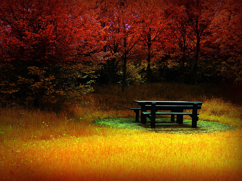 bdcbdcfbebfa-autumn-leaves-autumn-day-wallpaper-wp5004909