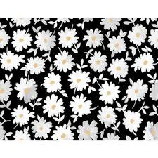black-and-white-daisies-wallpaper-wp5804066-1