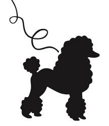 black-outline-poodle-Google-Search-wallpaper-wp5403723