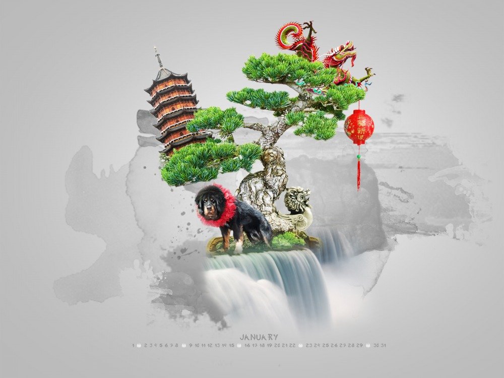 bonzai-Smashing-Desktop-Wallpapers-January-wallpaper-wp4804844