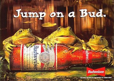 bud-girls-Bud-Frogs-Screen-Saver-Hoax-wallpaper-wp3003962