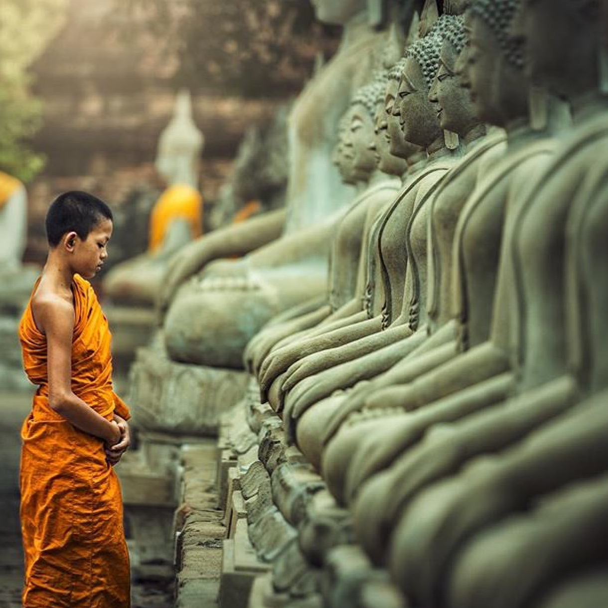 caccdcacbfffffa-buddhist-monk-buddhist-temple-wallpaper-wp3004051