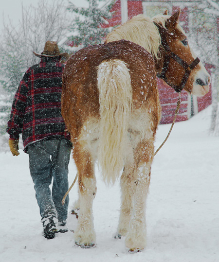 cbcfcdccaafbacd-snowy-day-country-christmas-wallpaper-wp5005630