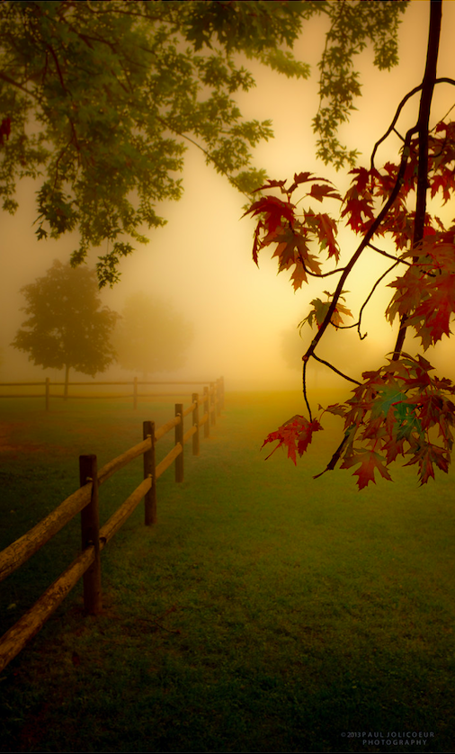 cddedaafa-morning-pics-foggy-morning-wallpaper-wp4002172