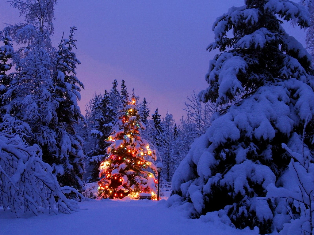 christmas-pictures-for-desktop-Pictures-HD-Christmas-Desktop-Backgrounds-Christmas-wallpaper-wp4604755