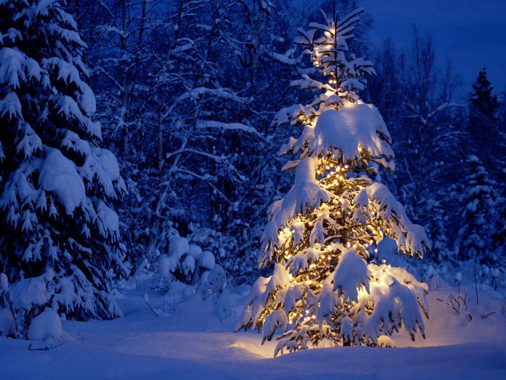 christmas-pictures-for-desktop-beautiful-christmas-tree-free-christmas-and-holiday-desktop-wallpap-wallpaper-wp4604752