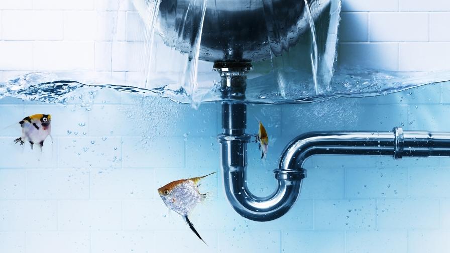 creative-water-art-fish-hd-download-wallpaper-wp3604407