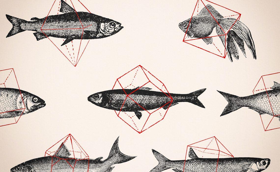 deco-fishes-in-geometrucs-florent-wallpaper-wp5804999