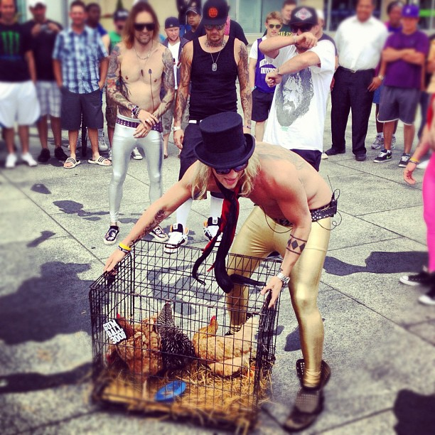 dudesons-dirtychanez-chickens-on-the-road-wallpaper-wp5206040