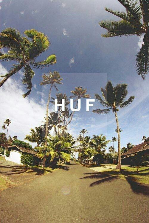 ebbeccbffdfeb-tropical-vibes-summertime-sadness-wallpaper-wp5003115